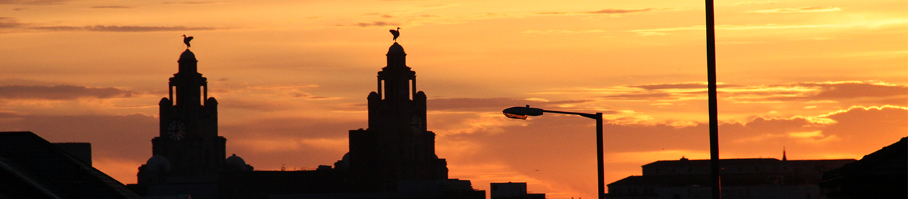 The Royal Liver Building silhouetted at sunset.